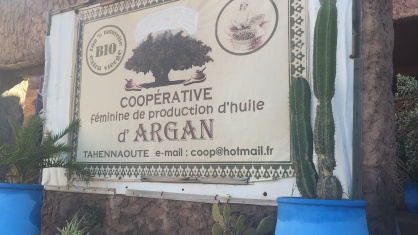 Argan oil cooperative
